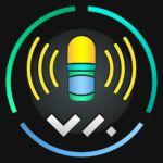 Voyage Audio